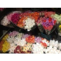 Today's color dozen roses